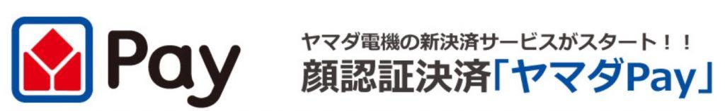 ヤマダPay